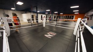 Zebra Boxing Ring at AKATX